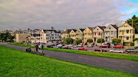 Painted Ladies Time Lapse stock video