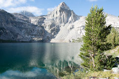 The Painted Lady at Rae Lakes in Kings Canyon National Park. The Painted Lady mountain reflected in the lake, with a pine tree in the foreground royalty free stock photography