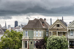 Painted Lady Royalty Free Stock Photos