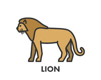 Painted line figure of lion. Vector outline symbol. For web and design Royalty Free Stock Photo