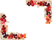 Painted mix fruits frame isolated on white background Royalty Free Stock Images