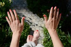 Painted nails. Royalty Free Stock Photo