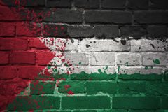Painted national flag of palestine on a brick wall royalty free stock photo