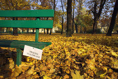 Painted park bench in the fall. Poland stock image