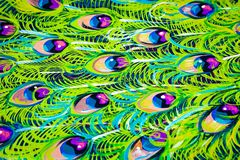 Painted Peacock Feather Background - Abstract stock images