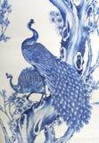 Painted Peacocks royalty free stock photo