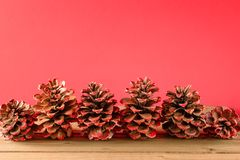 Painted pine cones on red background royalty free stock photos