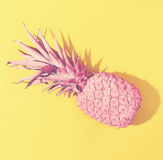 Painted pineapple on a bright background. Painted pineapple in hard light on a bright background Royalty Free Stock Photography