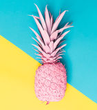Painted pineapple. On a vibrant duotone background Royalty Free Stock Image