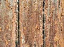 Painted plank Stock Images