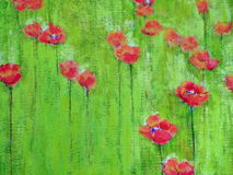 Painted poppy texture Royalty Free Stock Photos