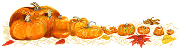 Painted pumpkin border Royalty Free Stock Image