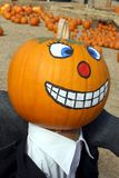 Painted pumpkin head. On pumpkin patch, with a background of pumpkin display royalty free stock image