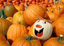 Painted pumpkin shining out of a heap stock image