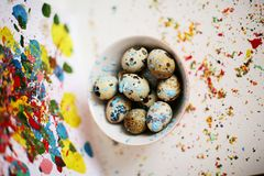 Painted quail eggs on colorful background. Painted quail eggs on colorful abstract background Royalty Free Stock Photo