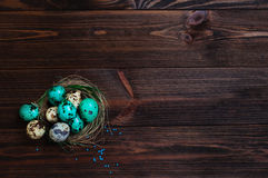 Painted quail eggs in natural nest over rustic wooden background Stock Photography