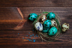 Painted quail eggs in natural nest over wooden background Stock Photos