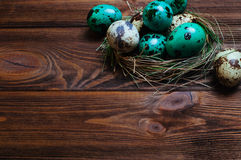Painted quail eggs in nest over rustic wooden background Royalty Free Stock Images