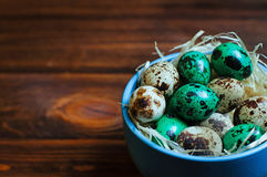 Painted quail eggs over rustic wooden background Stock Photos