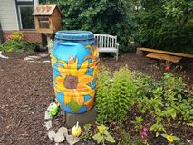 Painted rain barrel and garden. With wood bench stock images