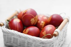 Painted red Easter eggs lie in a wicker basket with wooden handles on a white background royalty free stock images