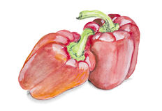 Painted  red  paprika pepper isolated Royalty Free Stock Image