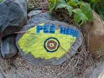 Painted rock with target Royalty Free Stock Images