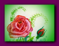 Painted rose in purple frame Royalty Free Stock Photos