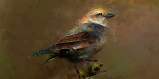 Painted scenic bird sitting on a branch royalty free illustration