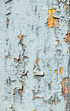 Painted shabby wood Royalty Free Stock Images