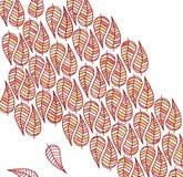 Painted skisserade sidor royaltyfri illustrationer