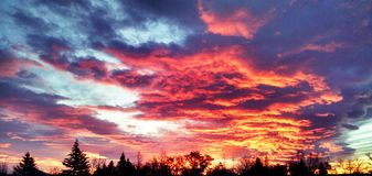 Painted Sky. A beautiful Sky over the west Royalty Free Stock Image