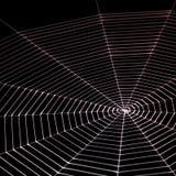 Painted spiderweb Stock Image