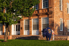 Painted statue of Buffalo in front of Council Hall  building Royalty Free Stock Photo