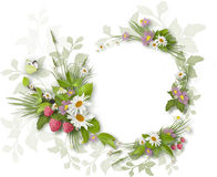Painted summer Circle frame Stock Photos