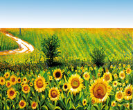 Painted sunflowers. Typical summer landscape, an expression of beauty Royalty Free Stock Images