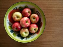 Painted Tin Bowl with Honeycrisp Apples royalty free stock photography