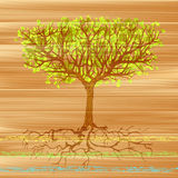 Painted Tree Royalty Free Stock Image