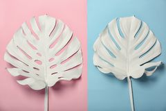 Painted tropical Monstera leaves on color background. Top view stock photos