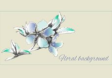 Painted vector flowers in gentle light-blue colors. Spring contour flowers watercolor vector illustration