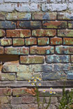 Painted Wall Royalty Free Stock Images