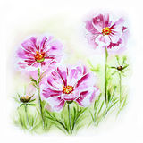 Painted watercolor card with flowers Stock Photos