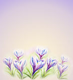 Painted watercolor card with flowers Royalty Free Stock Photos