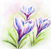 Painted watercolor card with flowers Royalty Free Stock Images