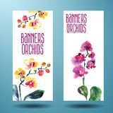 Painted watercolor card with orchid Stock Images