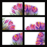 Painted watercolor card with violet flowers and place for text Royalty Free Stock Images