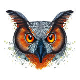 Painted watercolor picture of a ravenous night owl bird on a white background with red orange eyes with bright colors Stock Photo