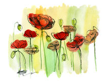 Painted Watercolor Poppies Royalty Free Stock Photo