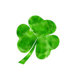 Painted watercolor shamrock isolated on white background for Sai Royalty Free Stock Image