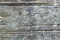 Painted weathered wooden texture Royalty Free Stock Images